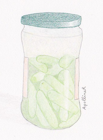 drawing of a pickles jar