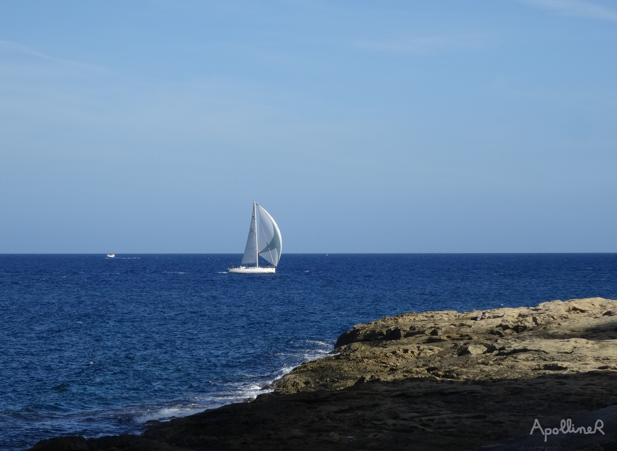 A view of sea with a sailing boat in Malta