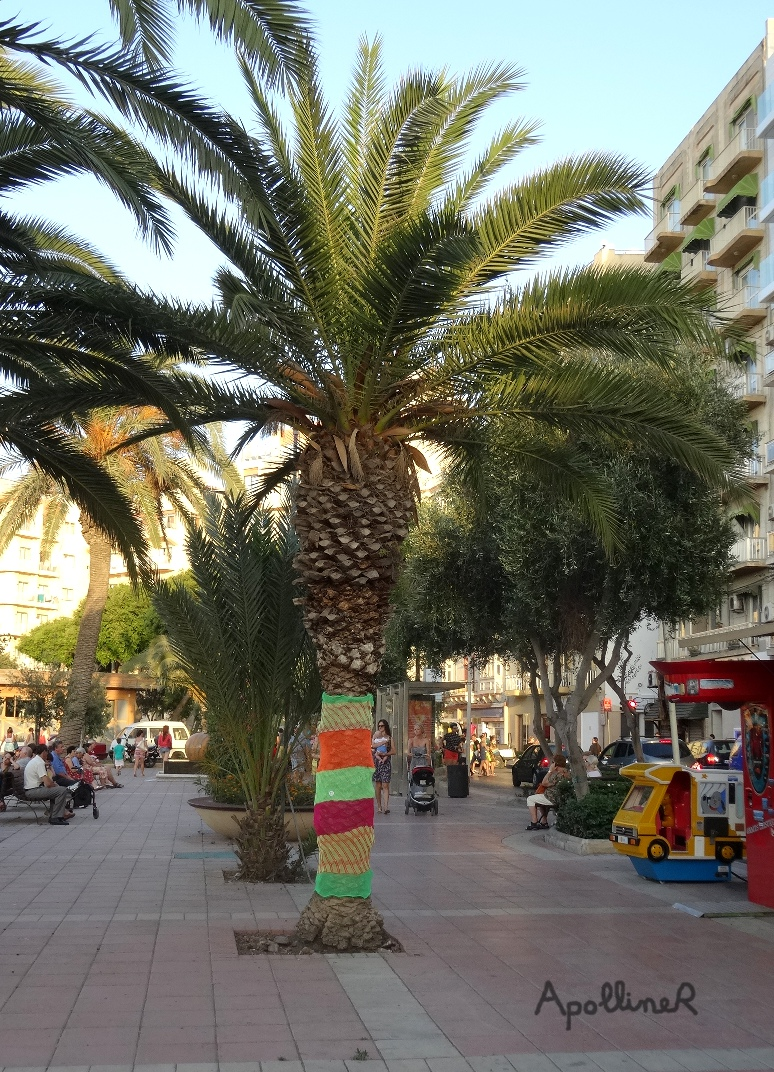 Sliema Street Art Festival in Malta : yarn bombing on a palm tree by Julia Rio