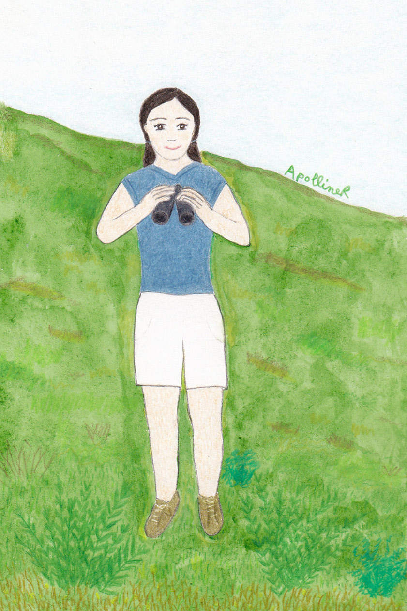 drawing of a woman holding binoculars in the countryside