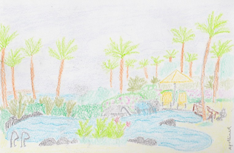 drawing: swimming pool and palm trees