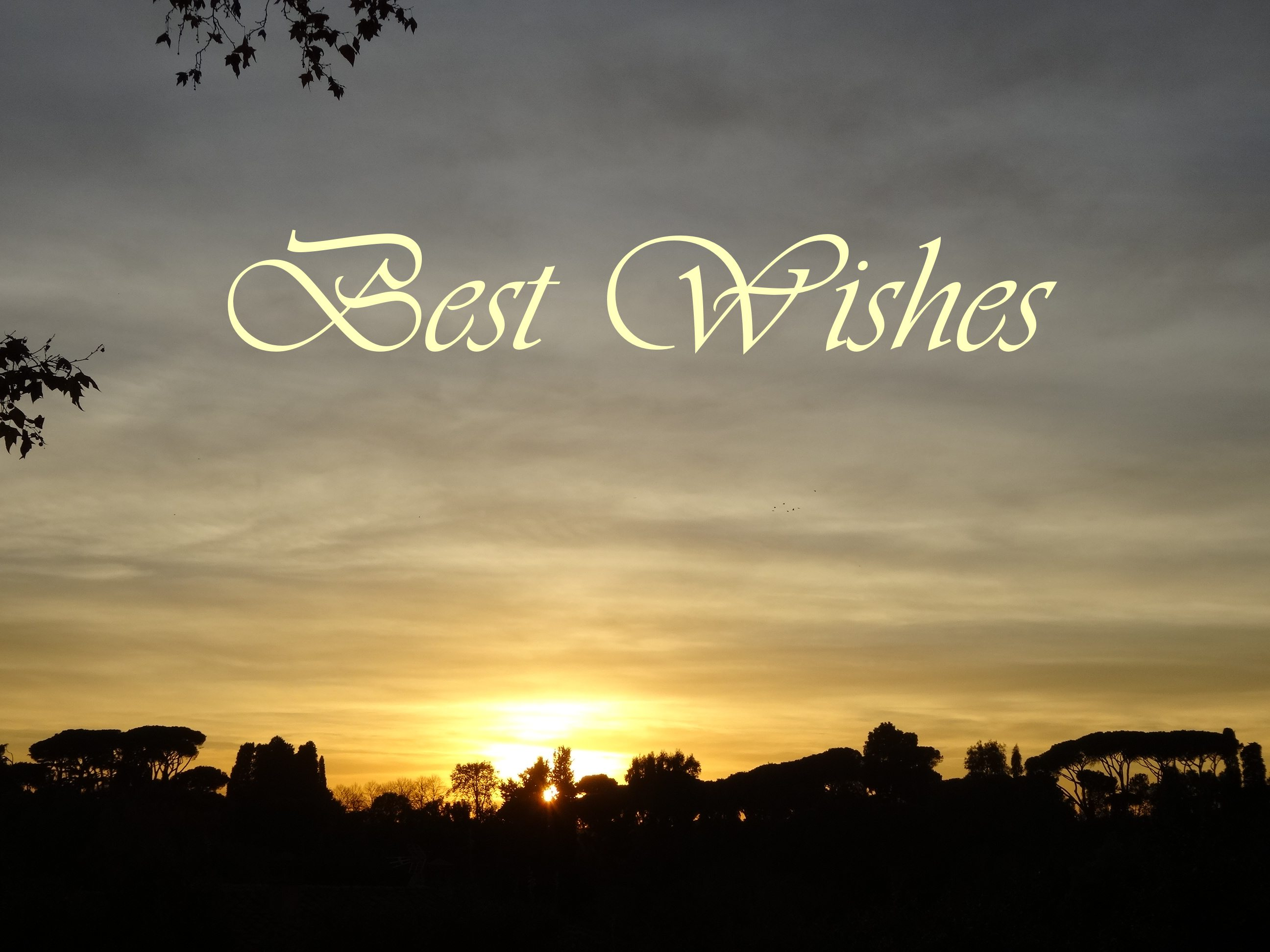 Sunset Best Wishes card