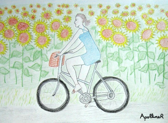 riding a bicycle in a sunflower field