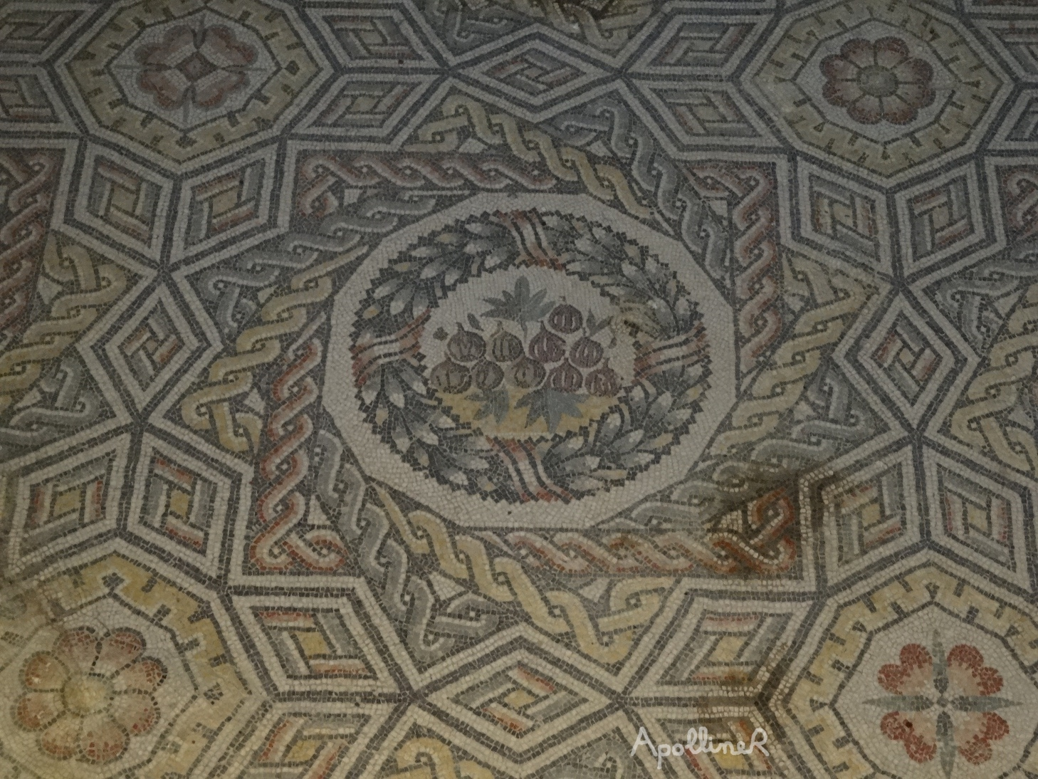 Roman mosaic with geometrical patterns and a medallion featuring figs. Villa Romana Del Casale in Sicily