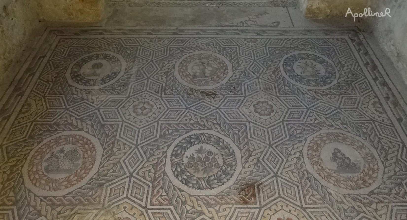 Roman mosaic combining geometrical patterns and medallions featuring fruits. Villa Romana Del Casale in Sicily