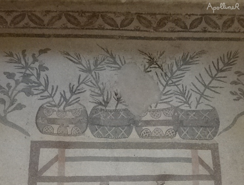 Roman mosaic showing potted plants. Villa Romana Del Casale in Sicily